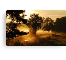 Early summer-morning dreamland Canvas Print
