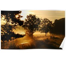 Early summer-morning dreamland Poster