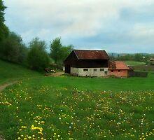 Grandpa's Barn by kalliope94041