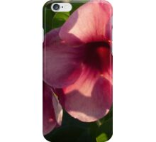 light and nature II - luz y naturaleza iPhone Case/Skin