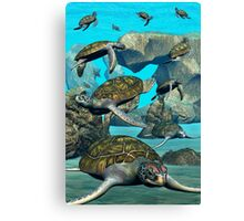 Turtle Bay Canvas Print