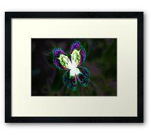 Fractal Glasswing Framed Print