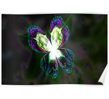 Fractal Glasswing Poster