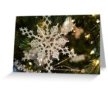 One Snow Flake Greeting Card
