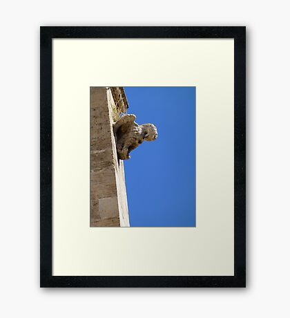 Pelican in its piety - Spain Framed Print