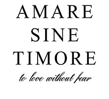 Amare Sine Timore by Francis O.