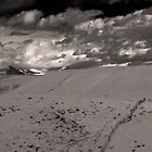 Rams Horn Peak #50 by Merritt Brown III