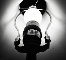 bright idea by M.  Photography
