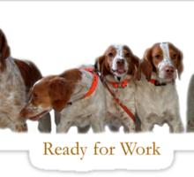 Ready for Work Sticker