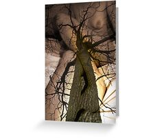 The Oak Story Greeting Card