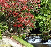 Autumn waterfall by DES PALMER
