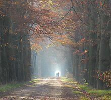 Let us walk towards the light by jchanders