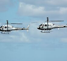 Rotors in sync by Barrie Collins