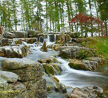 Japanese Garden Waterfall by DES PALMER