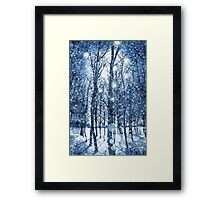 Silvery Moonlight Framed Print