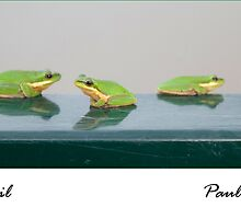 Frogs on a rail by Paul Gilbert