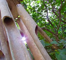 Wind Chimes by GSpitaliere
