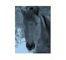 Moonlit Horse Art Print