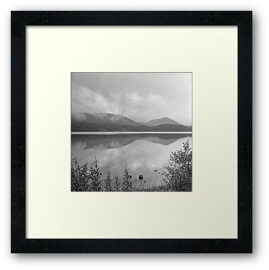 Loch Morlich reflections by Tim Haynes