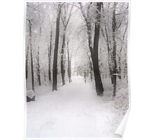 Wintery Path Poster