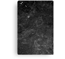 Soil Canvas Print