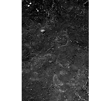 Soil Photographic Print