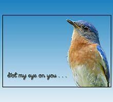 Got my eye on you . . . by Bonnie T.  Barry