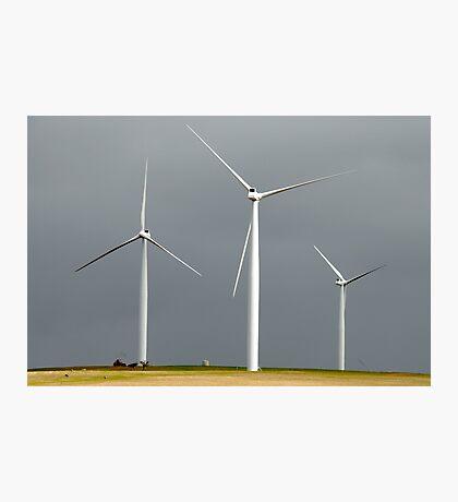Wind farm on a dark sky Photographic Print