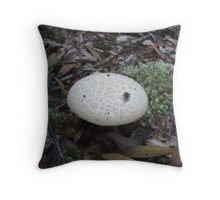 nearly squashed this little resting bug, on the fungi -  woops!!! Throw Pillow