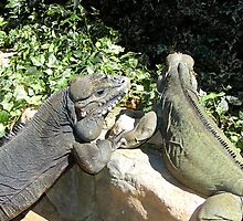 "THINK LIZARDS: ""The Proposal...Lizards in Love"" by Patricia Anne McCarty-Tamayo"