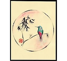 'Little Muse'   hummingbird watercolor painting Photographic Print