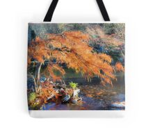 Bald Cypress Tote Bag