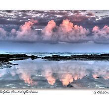 Dolphin Point Reflections Card by Annette Blattman
