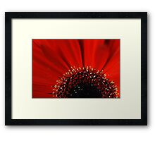 Red... Framed Print