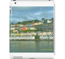 Cork Harbour iPad Case/Skin