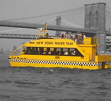 Floating New York Taxi by JessieP