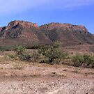 Flinders Ranges Colour by miclile