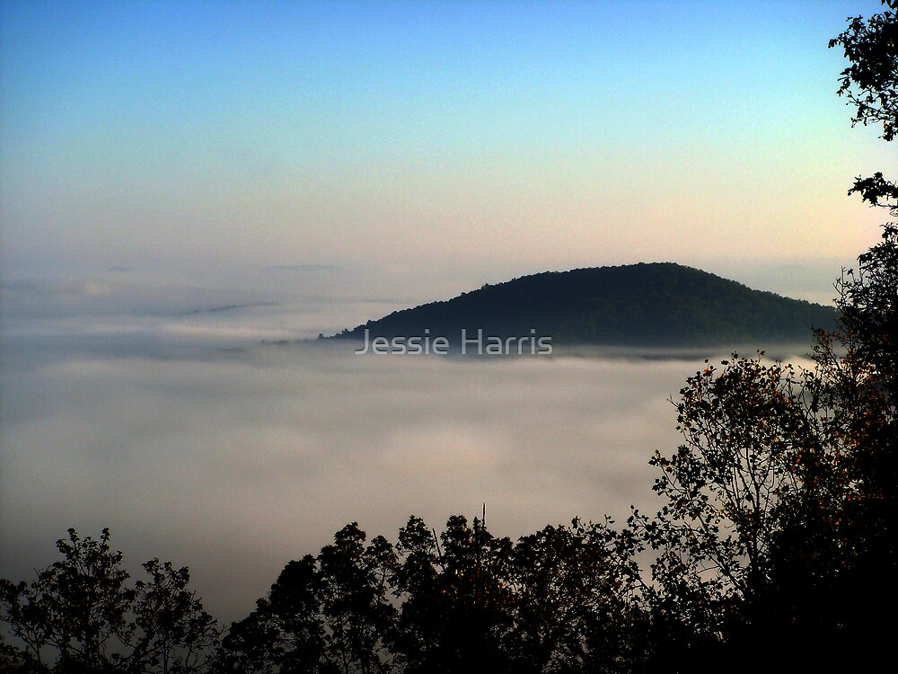 Foggy Morning Sunrise by Jessie Harris