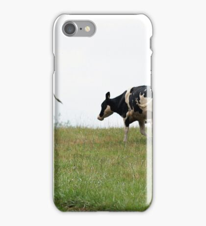 Cows in Pasture iPhone Case/Skin