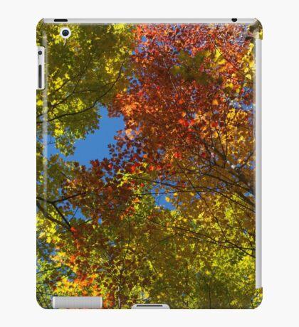 Autumn (2014) iPad Case/Skin