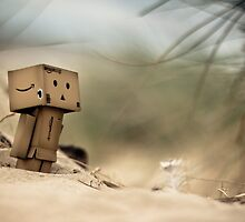 Revoltech Danboard at the Beach by cyanotype
