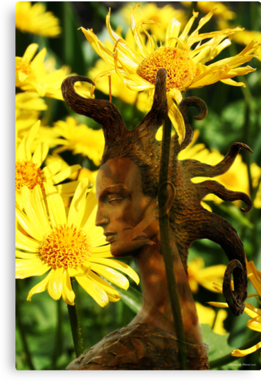 Queen of Flowers (from my exhibition) by Antanas