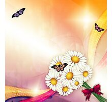 Camomiles and butterfly Photographic Print