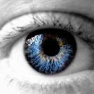 Eye Spy by karolina