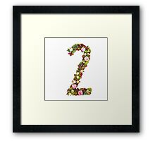 The number Two Part of a set of letters, Numbers and symbols of the Alphabet made with flowers Framed Print