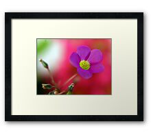 Purple... Framed Print
