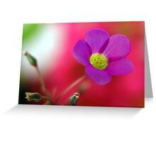 Purple... Greeting Card