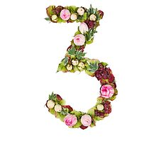 The number Three Part of a set of letters, Numbers and symbols by PhotoStock-Isra