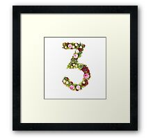 The number Three Part of a set of letters, Numbers and symbols Framed Print