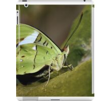 Obrina Olivewing iPad Case/Skin